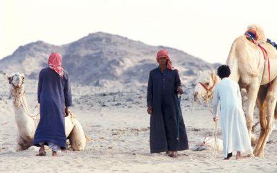 Role of Tribalism in Modern Saudi Arabia