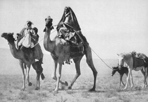 Bedouins Tribes in Saudi Arabia Photo